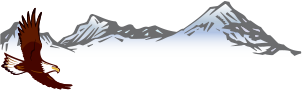 Eagle Environmental Consulting -